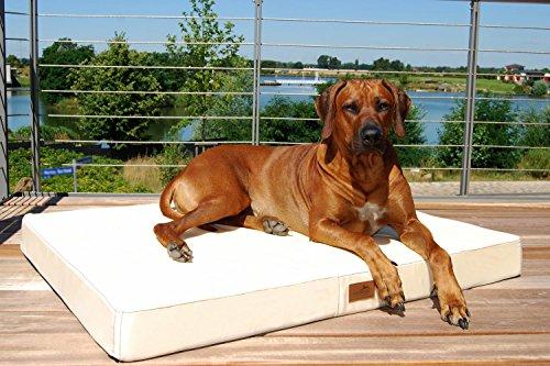 tierlando® Mobile Hundematratze HUGO BASIC | Gehobene Stabilität & Qualität! | Anti-Haar Polyester | L 100 x 80 x 13 cm | Graphit Grau - 5