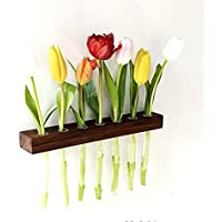 Wandvase Nuss 7er Reagenzglasvase Blumenvase