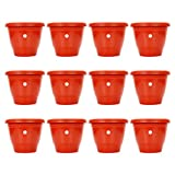 #4: Gamla/Planter/Pot 8-inch (Pack of 12 Pots) (Red/Terracotta Colour Pot) for Garden Balcony Flowering Pot by Kraft Seeds