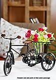 EtsiBitsi Flower Vase, Cycle Rickshaw Sh...