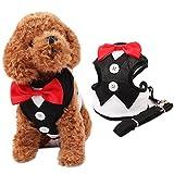YUHUAWYH Bowtie Hunde Weste Geschirre Brustgeschirre mit Ziehen Riemen S M L (M, schwarz)