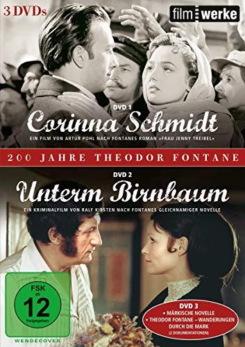 200 Jahre Theodor Fontane (Filmwerke): Corinna Schmidt / Unterm Birnbaum [3 DVDs]