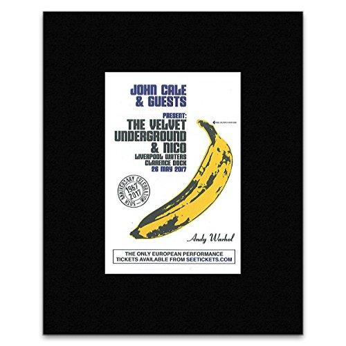 John Cale & Gäste-The Velvet Underground & Nico, können 2017Mini Poster-25.4x 20.3cm - Mini-poster