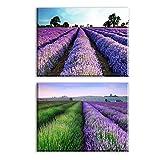Piy Painting Wandbilder Lavendel im Provence Kunstdruck auf Leinwand Günstig inkl Rahmung, Blumen Bilder auf Leinwand, Fotoleinwand und Kunstdrucke auf Wanddeko für Küche Weihnachten 30x40cm 2set