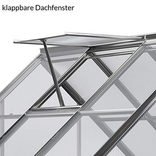 Deuba Aluminium Gewächshaus - 7