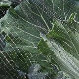Malla de protección contra insectos / mariposas, para jardín, 7 mm, varios tamaños disponibles