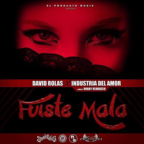 Fuiste Mala (feat. Industria Del Amor) [Explicit] -