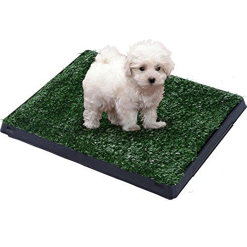 alfombra-perros-51x76x3cm-cesped-hacer-pis-lavable-mascota-perro-pipi-en-casa