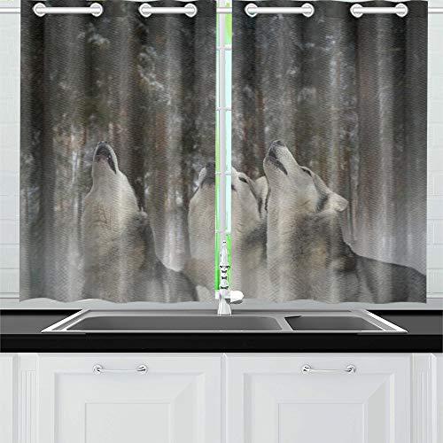 JOCHUAN Howl Moon Flotter Dreier Spaß Küche Vorhänge Fenster Vorhang Ebenen für Café Bad Wäscherei Wohnzimmer Schlafzimmer 26 * 39 Zoll 2 Stück
