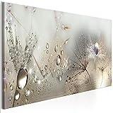 decomonkey | Bilder Pusteblume 150x50 cm | 1 Teilig | Leinwandbilder | Bild auf Leinwand | Vlies | Wandbild | Kunstdruck | Wanddeko | Wand | Wohnzimmer | Wanddekoration | Deko | Wanddeko | Blumen Tau Pflanzen