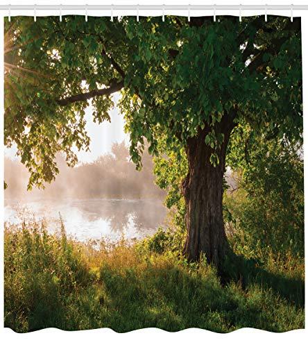 ABAKUHAUS Baum Duschvorhang, Stream Mystic Nebelige Szene, mit 12 Ringe Set Wasserdicht Stielvoll Modern Farbfest und Schimmel Resistent, 175x200 cm, Braun Grün Sand (Braun Duschvorhang Set)