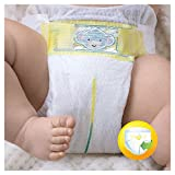 Pampers Premium Protection Nappies New Baby Jumbo Pack - Size 1, Pack of 72 Bild 3