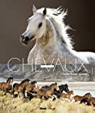 Christiane Slawik, à la rencontre des chevaux