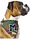 #10: Kitty & The Woof Gang Adjustable Bandana Scarf for Dog