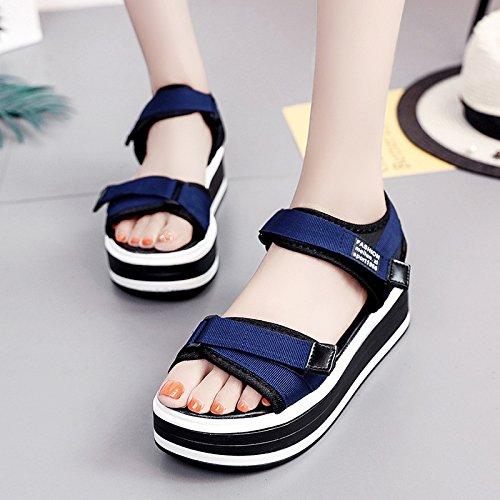 Lgk & Sandales D'été Semelles Épaisses Sandales Pour Les Femmes D'été Plates Chaussures Décontractées Tout-match Bleu