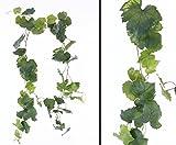Edle Traubenblatt Girlande mit 54 Blättern in unterschiedlichen Grüntönen, Gesamthöhe ca. 186cm - Kunstpflanzen - Dekorationspflanzen für Weinfeste und Restaurants