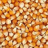 NatureHerbs Pop Corn Kernels-400 Gm