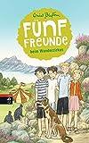 Fünf Freunde beim Wanderzirkus (Einzelbände, Band 5)