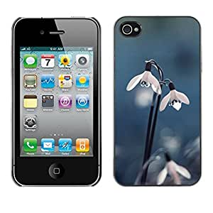 Omega Covers - Snap on Hard Back Case Cover Shell FOR Apple iPhone 4 / 4S - Snow Flower Dew Spring Winter Blue