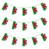 My Planet 24 x Wales Welsh Premium Qualität Flagge Wimpelkette Riesiges 10 m PARTY Dekoration Banner