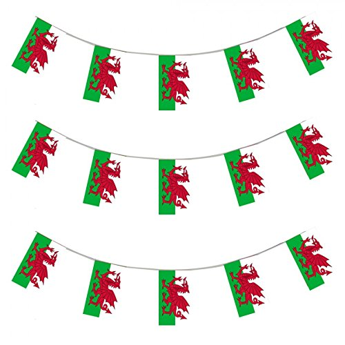 My Planet 24 x Wales Welsh Premium Qualität Flagge Wimpelkette Riesiges 10 m PARTY Dekoration Banner (Die Rugby-irland Irische)