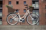 FISCHER E-Bike RETRO ER 1704, beige, Vorderradmotor 36 V/317 Wh und LED-Display -