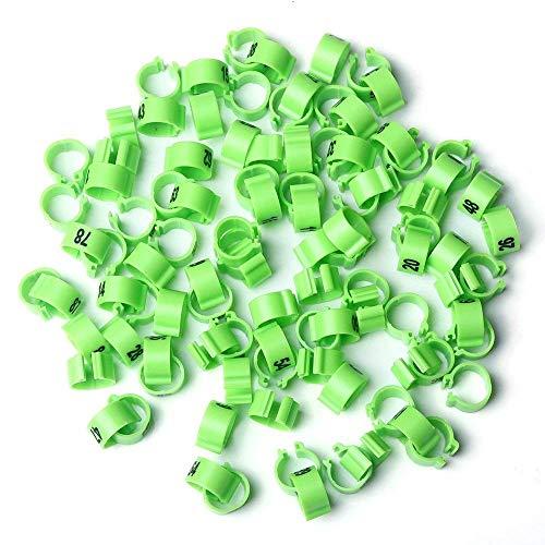 Visa Store Vert: Bandes de Pattes d'oiseau Multicolores TYFOCUS 001-100, numérotéES de 8 mm.