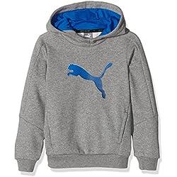Puma Sport - Sudadera con capucha para niño, Niño, Jr Sport Hooded Sweat.mgh, gris, 8 años (talla del fabricante: 128)