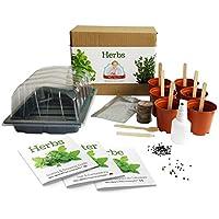 Hierbas - Mrs Henri's Plant Growing Kit. Cultiva 6 hierbas aromáticas desde la semilla. El regalo ideal para cualquiera que disfruta cocinando y quiere tener su propio jardín de hierbas.