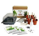 Herbes - Mrs Henri's Plant Growing Kit. Cultiver 6 herbes fines à partir de graines. Le cadeau idéal pour tous les amateurs de cuisine qui veulent leur propre jardin de plantes aromatiques. Coffret de qualité supérieure avec tout le nécessaire pour démarrer.