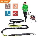 Jogging dog leash,Long Nylon Dog Leash with Adjustable Waist Belt for Running, Jogging
