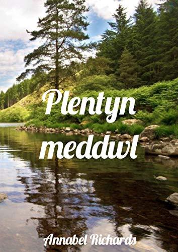 Plentyn meddwl (Welsh Edition)