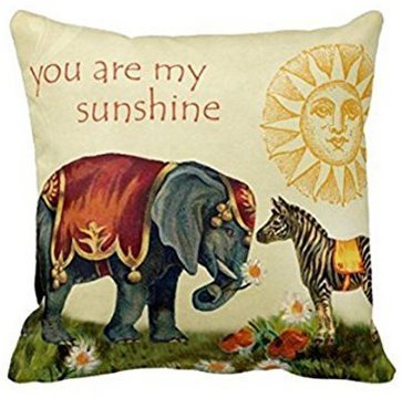 fengxutongxue You Are My Sunshine Square Throw Pillow Case Custom Indian Elephant Cushion Cover Cotton Polyester 18x18 Inches Brown Leopard Fleece