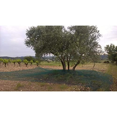 LONODIS Filet de récolte Anti-UV Fendu Double Trame 50g / m2 Vert