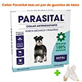 Collar Antiparasitos 58 cm. (+ 1 par de guantes de látex), Pulgas, Garrapatas, mosquito flebotomo anti LEISHMANIASIS para perros MEDIANOS, Repelente 100% NATURAL, collar parasital perros medianos