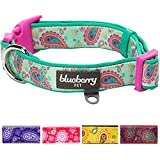 Blueberry Pet Soft & Comfy Spring Paisley Flower Print Emerald Green Adjustable Neoprene Padded Dog Collar, Neck 45cm-66cm, Large, Collars for Dogs,