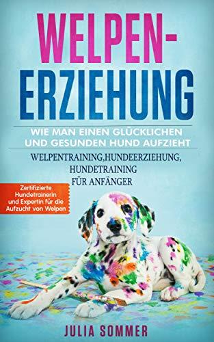 Welpenerziehung, Wie man einen glücklichen und gesunden Hund aufzieht: Welpentraining, Hundeerziehung, Hundetraining für Anfänger.