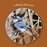 Image de A Bird in My Lens (English Edition)
