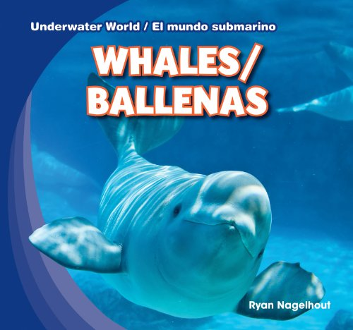 Whales / Ballenas (Underwater World / El mundo submarino) por Ryan Nagelhout