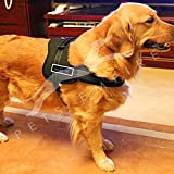 #6: Pets Empire No Pull Dog Vest Harness, Adjustable Pet Body Padded Vest with Reflective Stitching and Velcro Patches for Small Medium Large Dog Walking, Training - No More Pulling, Tugging or Choking Size-XL