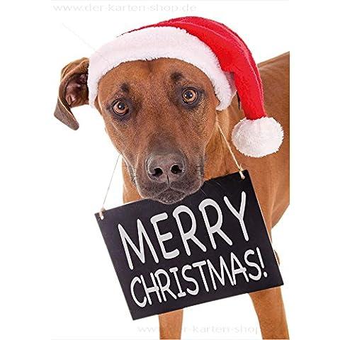'3unidades A6Animales Postal Tarjeta tarjeta de Navidad Navidad Rhodesian Ridgeback perro con cartel Merry Christmas