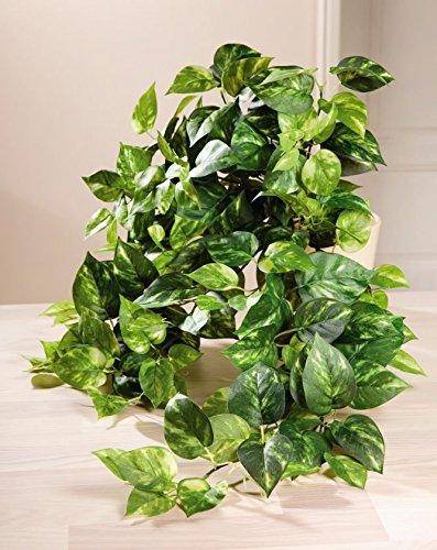 dekoefeutute-kunstblume-dekoblume-dekopflanze-textil-efeu-zierpflanze