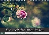 Die Welt der Alten Rosen (Wandkalender 2018 DIN A2 quer): Malerische Fotografien von alten Rosensorten. (Monatskalender, 14 Seiten ) (CALVENDO Natur) [Kalender] [Apr 16, 2017] Steudte, Regina