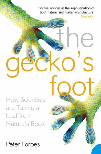 The Gecko's Foot: How Scientists are Taking a Leaf from Nature's Book