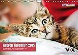 """hundkatzemaus – Katzen Kalender 2015 (Wandkalender 2015 DIN A4 quer): Der """"hundkatzemaus""""-Kalender 2015: 12 bezaubernde Katzenmotive für das ganze ... den Stubentigern. (Monatskalender, 14 Seiten)"""