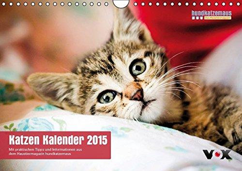 hundkatzemaus - Katzen Kalender 2015 (Wandkalender 2015 DIN A4 quer): Der