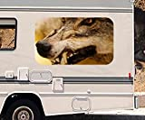 3D Autoaufkleber Wolf böse verärgert Tier wild Wildnis Wohnmobil Auto KFZ Fenster Motorhaube Sticker Aufkleber 21A1031, Größe 3D sticker:ca. 45cmx27cm