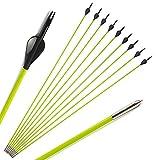 ZSHJG 30 Pollici Frecce in Fibra di Vetro Spine 600 Frecce di Caccia con Freccia Punto Frecce di Pratica Bersaglio per Ricurvo e Arco Compound (12pcs)