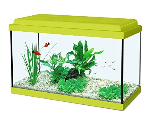 Aquarien Aquarium Zolux \'Nanolife Kidz 30\' 8LT. 30x15x20cm. 8 Litri grün