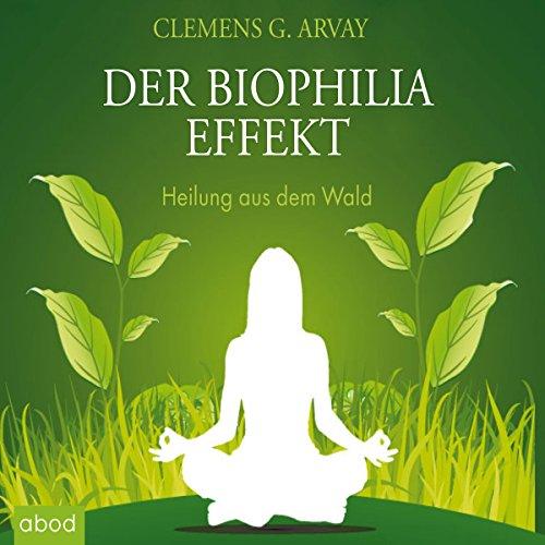 Der Biophilia Effekt: Heilung aus dem Wald
